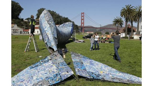 Life-sized plastic whale to be on display near Golden Gate Bridge