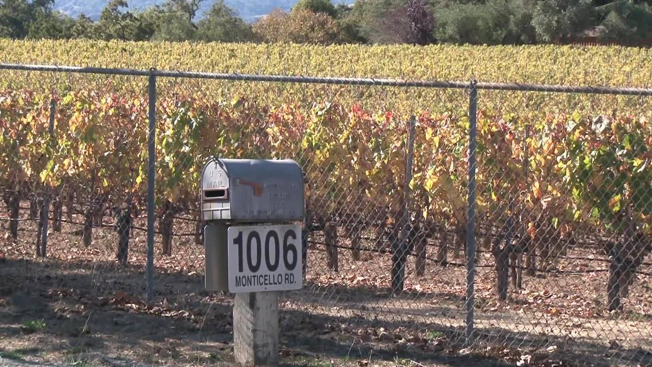 Grape Picker machine fatal accident in Napa