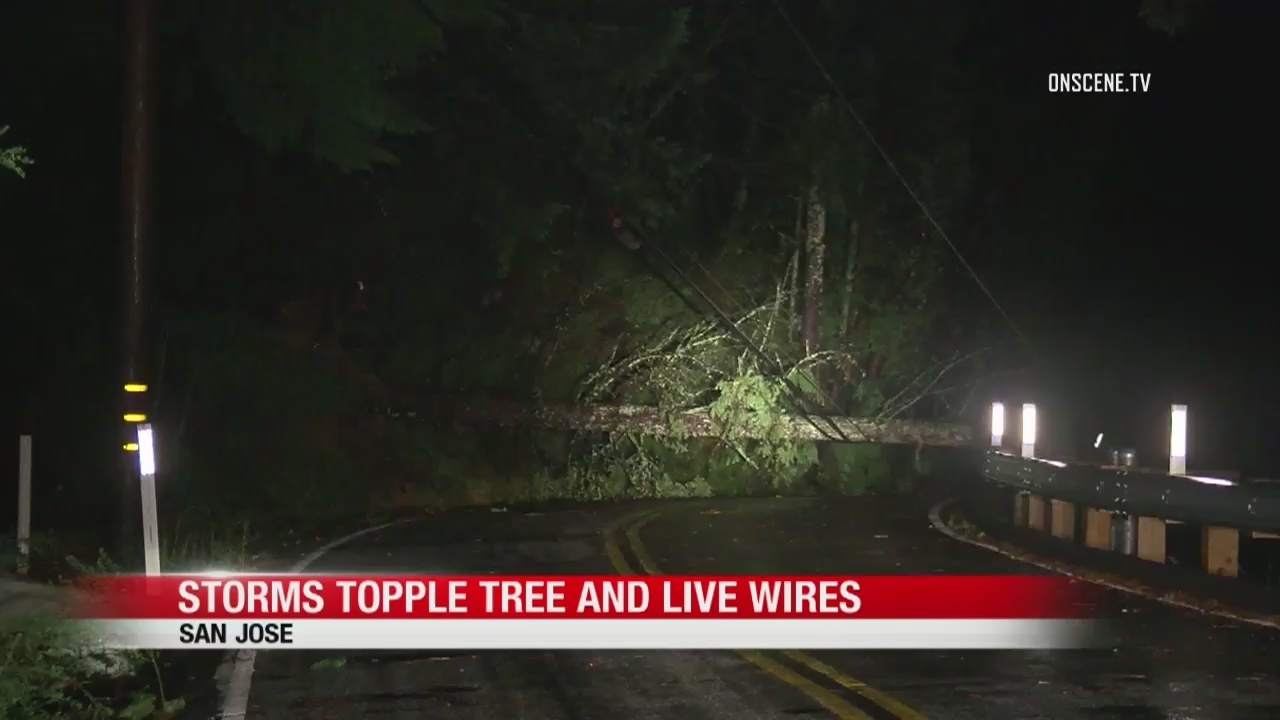 5 killed in deadly Bay Area storm