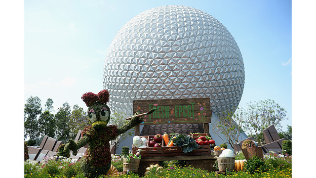 Construction worker falls to his death at Disney's Epcot park